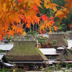 【達人最推薦】京都美山町