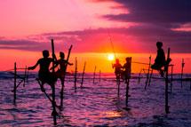 斯里蘭卡 入住世界環保綠建築
