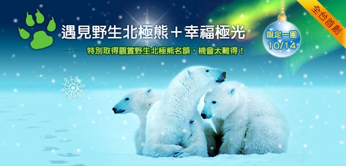 野生北極熊