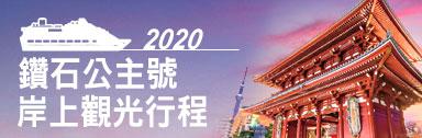 2020鑽石公主號岸上觀光