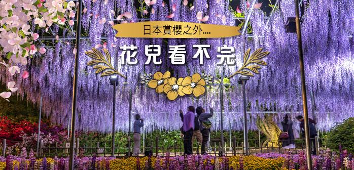 日本初夏賞花