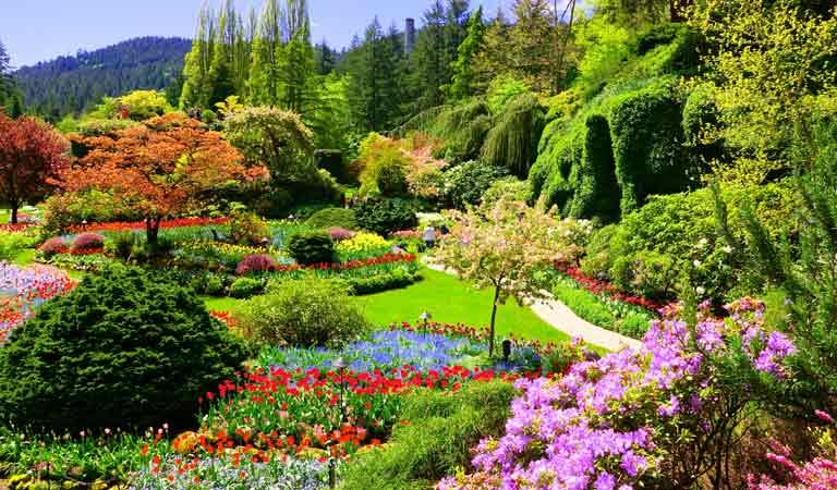 加拿大布查花園